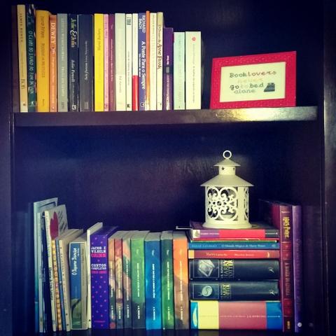 Minha prateleira de livros