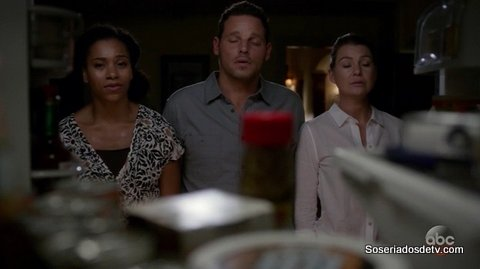 Grey's Anatomy: Both Sides Now (13x05)