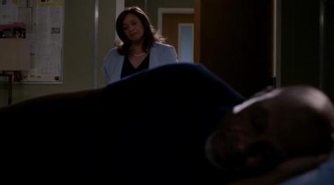 Grey's Anatomy: Civil War (13x15)