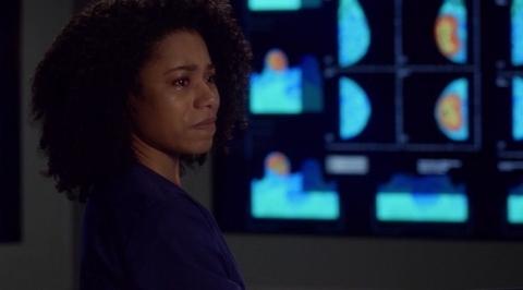 Grey's Anatomy: 'Till I Hear It from You (13x17)