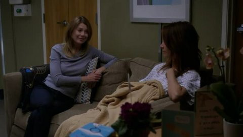 Grey's Anatomy: Break Down the House (14x01)