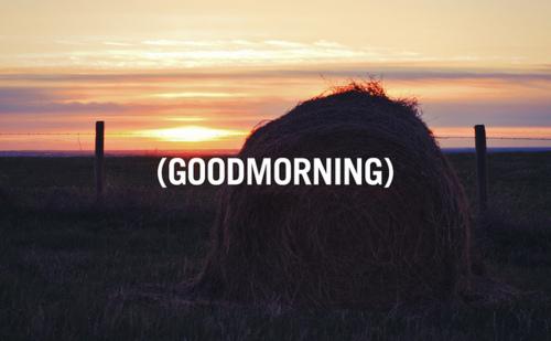 (GOODMORNING)