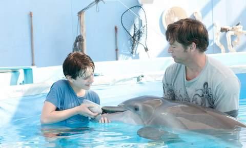 Cinema: Winter, o golfinho
