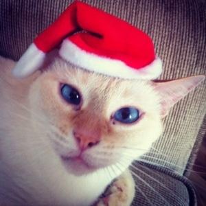 Então é Natal...