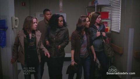 Grey's Anatomy: Love Turns You Upside Down (9x08)