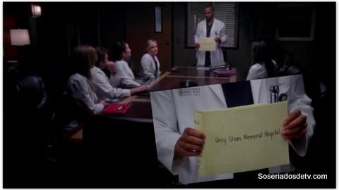 Grey's Anatomy: Transplant Wasteland (9x17)