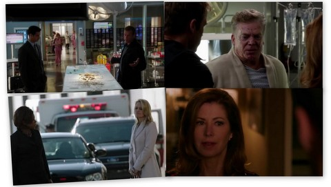 Body Of Proof: Disappearing Act (3x09)