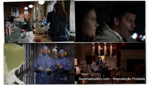 Bones: The Fact In The Fiction (8x17)