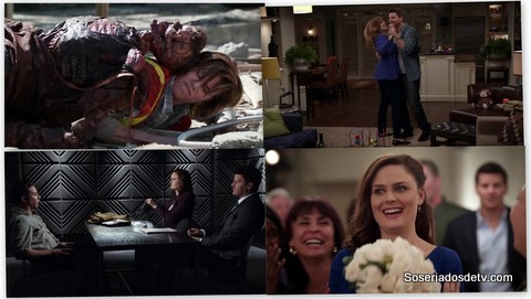 Bones: The Party in the Pants (8x22)