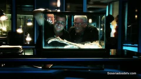 CSI: Torch Song (14x03)