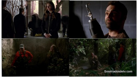 castle 5x20 s05e20 big foot