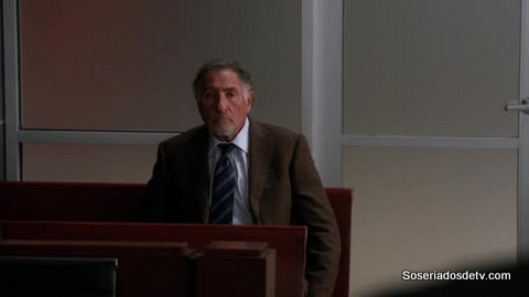 The Good Wife: Here Comes the Judge 4x8 s04e08