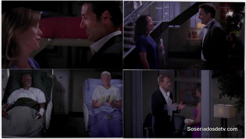 Grey's Anatomy: Puttin' on the Ritz (10x4)