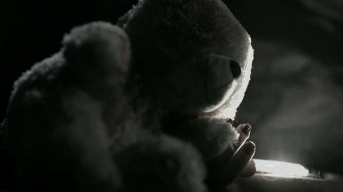 a teia - episódio 9 t globo ursinho