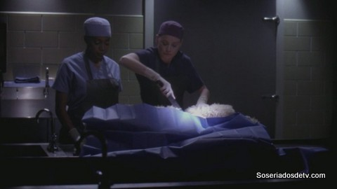 Grey's Anatomy: Man on the Moon (10x11)