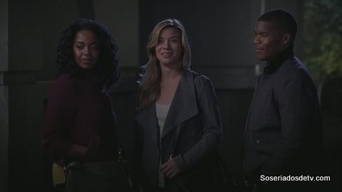 Grey's Anatomy: You've Got to Hide Your Love Away (10x14)