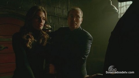 Castle In the Belly of the Beast (6x17)