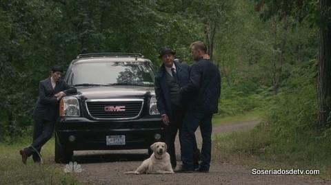 The Blacklist: Dr. Linus Creel 2x04 s02e04 red e o cão