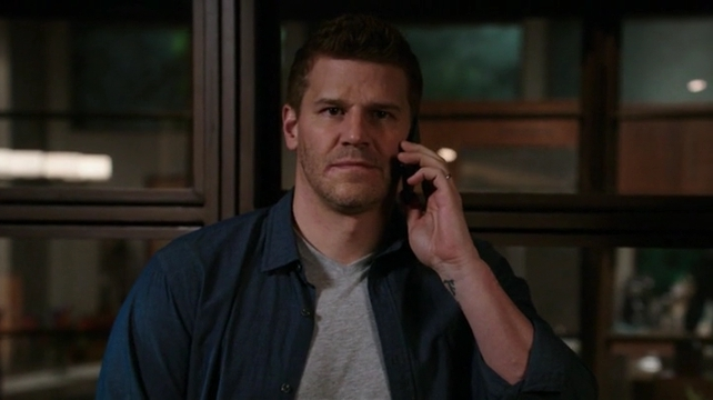 Bones The Eye in the Sky 10x15 s10e15 Booth