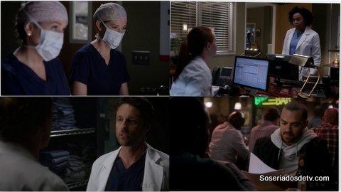 Grey's Anatomy I Wear the Face  (12x17)