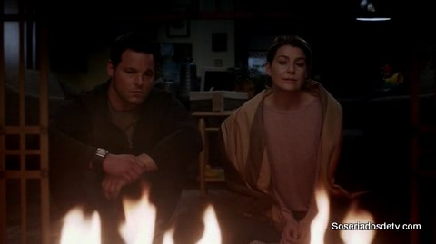 Greys Anatomy When It Hurts So Bad 12x16 s12e16