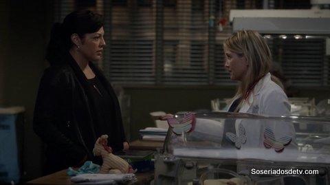 Grey's Anatomy Trigger Happy 12x20 s12e20 Callie Arizona