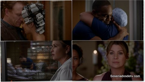 Greys Anatomy Family Affair 12x24